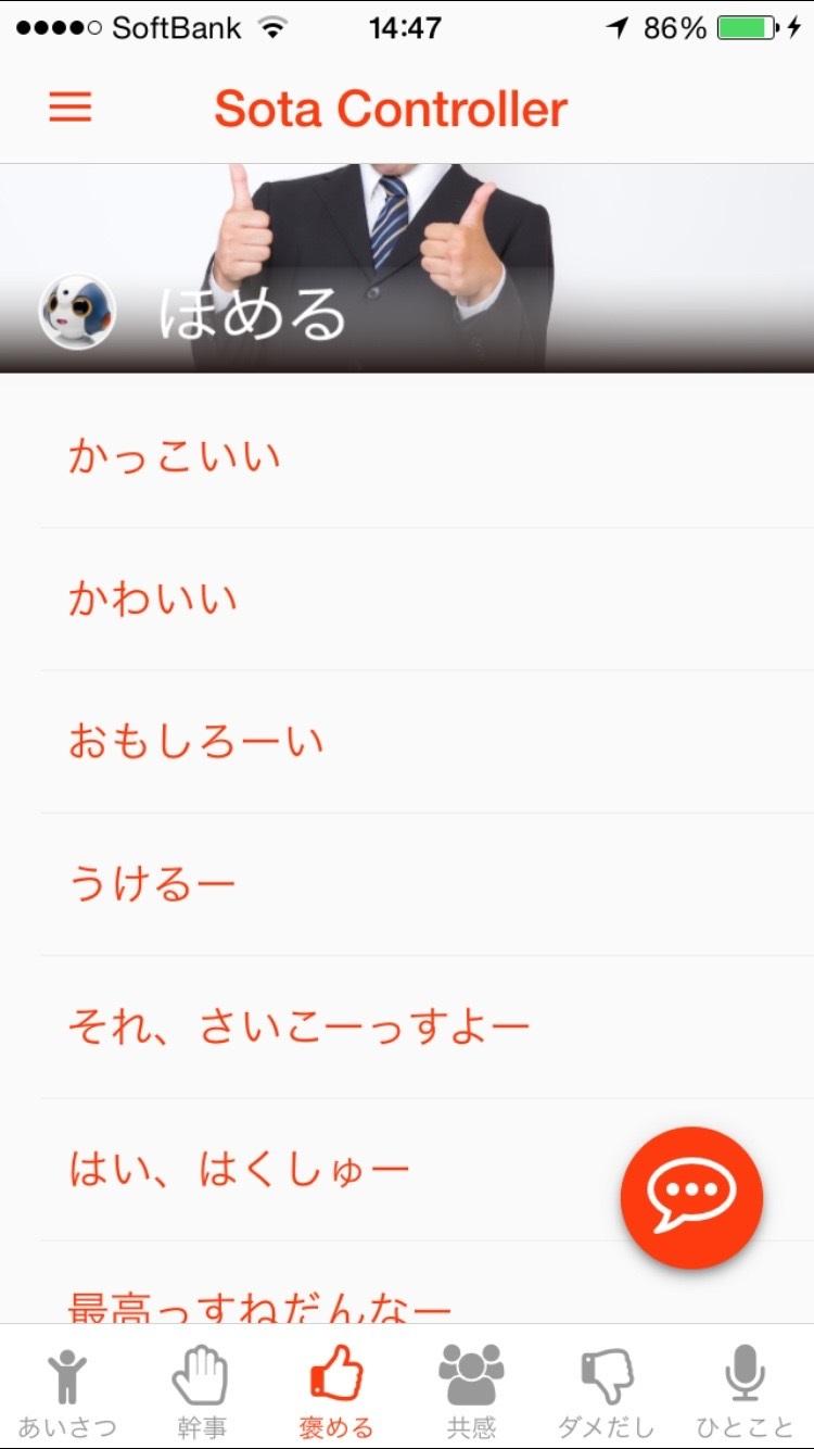 sota_controller_homeru.jpg