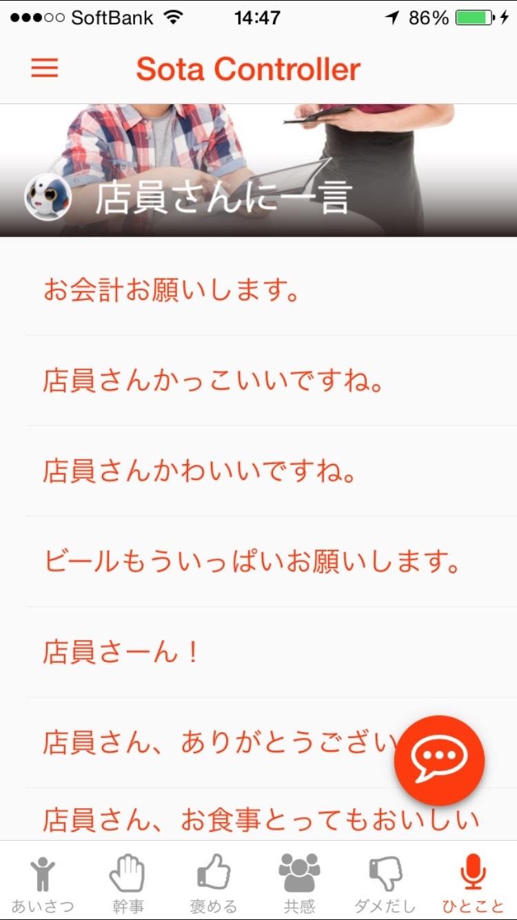 sota_controller_tenin.jpg