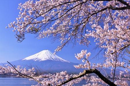 japan_culture_450S.jpg