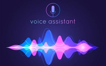 voice_assistant_image450S2.jpg