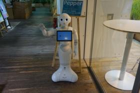 株式会社パソナ様と共同で、人材とロボットを融合した受付業務委託サービスのPepper受付アプリを開発しました。